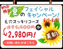 夏の特別キャンペーン