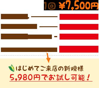 1回7,500円 初めてご来店の方は2,980円でお試し可能