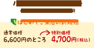 ハワイアンロミロミ60分 特別価格4,700円