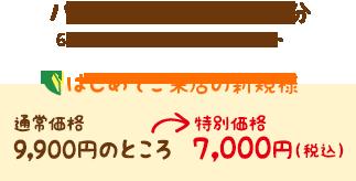 ハワイアンロミロミ90分 特別価格8,000円