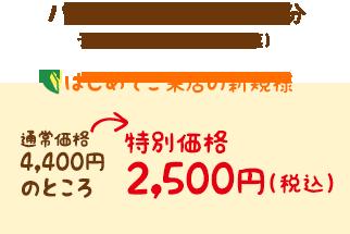 ハワイアンロミロミ40分 特別価格2,500円