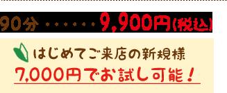 ハワイアンロミロミ40分 9,900円